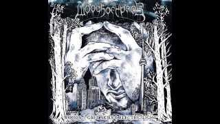 Woods of Ypres - Woods 5: Grey Skies & Electric Light (2012) Full Album
