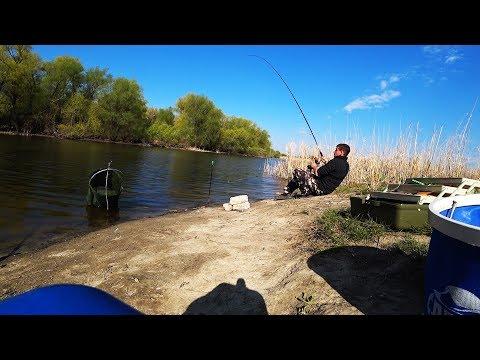 Рыбалка 2019 ТУТ