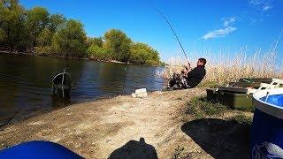 Рыбалка 2019 ТУТ РЫБЫ КАК В АСТРАХАНИ ХОТЬ ЛОВИ НА ПУСТОЙ КРЮЧОК