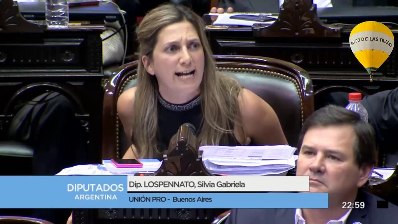Impuesto A Las Ganancias Diputada Silvia Lospennato Pro Encendido Discurso