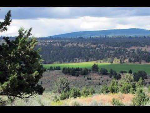Hunter Finds Bigfoot Kills In Eastern Washington State!