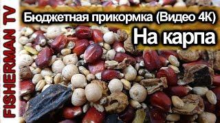 Зерновые в карповой ловле, Бюджетная прикормка (Видео 4К)