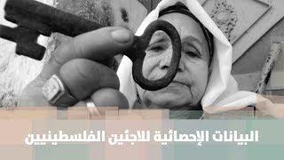 البيانات الإحصائية للاجئين الفلسطينيين