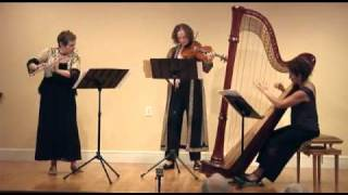 Aureole Trio performs Veiled Echoes by Lior Navok, part 1
