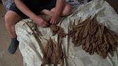 Табак листовой Вирджиния Голд 0663857488 - YouTube