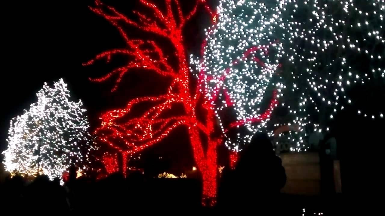 lights before christmas toledo zoo part 1 - Lights Before Christmas Toledo Zoo