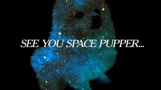 Space Gabe-Magic Fly (See you space, pupper)