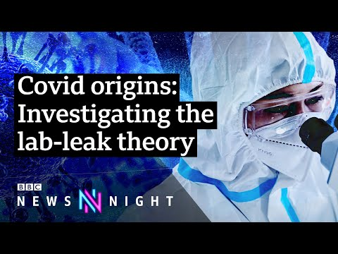 Download Covid-19: Did the pandemic start in a Wuhan lab? - BBC Newsnight