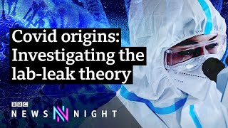 Covid-19: Did the pandemic start in a Wuhan lab? - BBC Newsnight