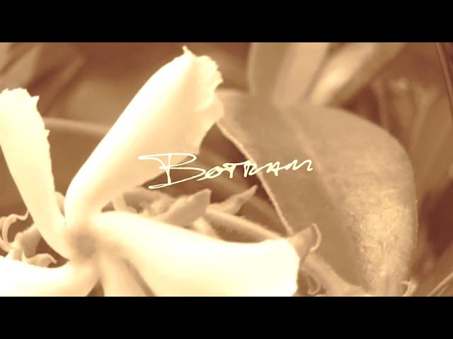 Botram - The Unknown (Preview)