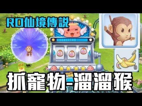 【RO攻略】捕捉寵物 溜溜猴 / 仙境傳說 守護永恆的愛 - YouTube