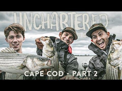 INSANE Striper Feeding Frenzy! - Unchartered Cape Cod 𝗣𝗧. 𝟮 w/ JonB, SBFishing & SeñorBassFishing