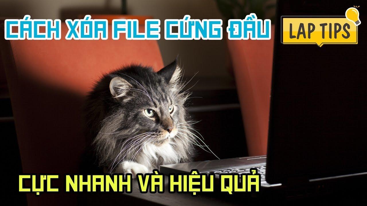 Cách xóa file cứng đầu, xóa file không thể xóa được cực nhanh trong vòng 1s