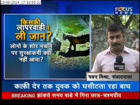 Tiger attack in delhi zoo Pawan