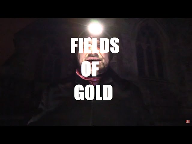 FIELDS OF GOLD ~ A Poem by Shane M. O'Sullivan