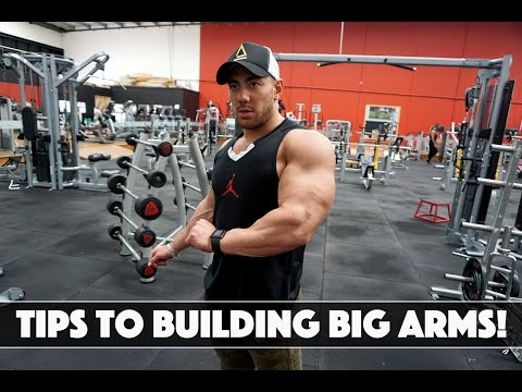 TIPS TO BUILDING BIG ARMS
