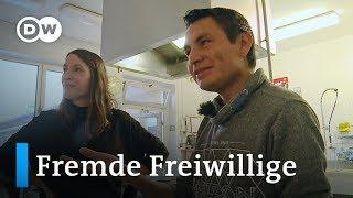 Weltwärts: Freiwillig helfen in Deutschland   DW Reporter