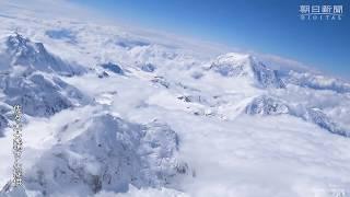北米の最高峰デナリ南西壁をスキーで滑降に成功 山岳スキーヤーの佐々木大輔さん