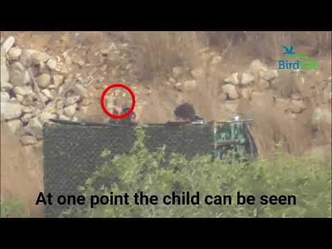 FKNK Secretary General's brother filmed hunting with minor a
