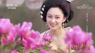 《国宝档案》 20190913 盛世之都——红妆华服绘丽影  CCTV中文国际