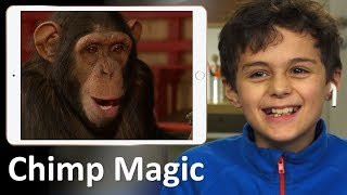 Kids React To Chimp Magic
