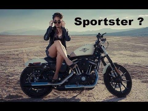 Спорстер? ( Сообщество Sportster Squad и Harley Davidson Xl1200)