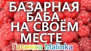 Колесниковы /Базарная баба на своём месте /Обзор Влогов /