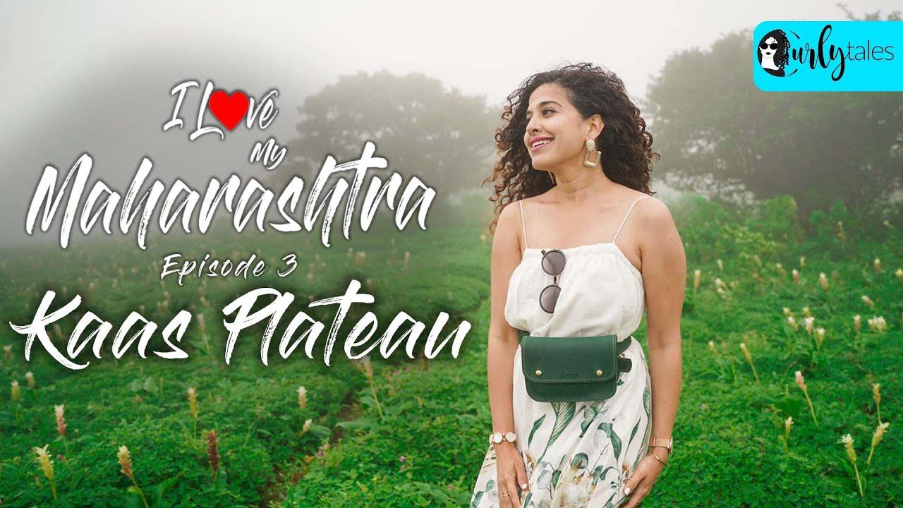 Kaas Plateau: The Valley Of Flowers In Maharashtra   I Love My Maharashtra Ep 3   Curly Tales