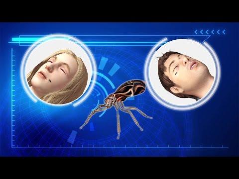 Chagas disease far deadlier than previously thought