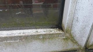 Fensterrahmen Reinigen