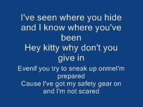 Mean kitty song
