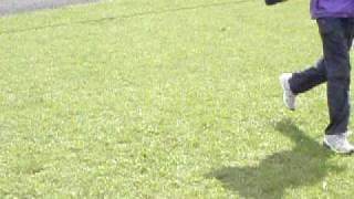 飼い主とサッカーをする銀.