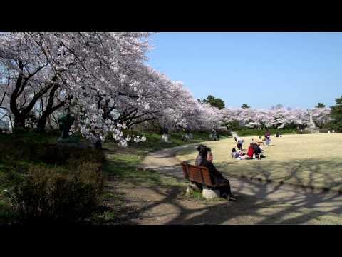 2014日本春之旅 (5)- 富山縣高岡