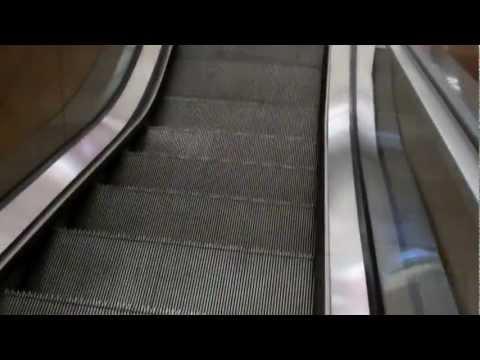 Schindler Escalators At Neiman Marcus Southpark Mall I