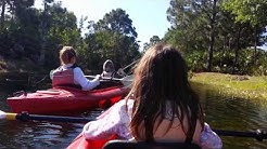Kayaking through the Brevard Zoo Melbourne Florida