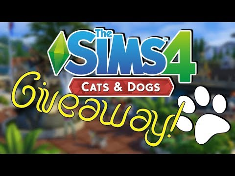 300 SUBSCRIBER GIVEAWAY | SIMS 4 EXPANSION PACK (CATS AND DOGS)