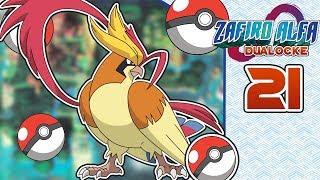 Pokemon Zafiro Alfa DUALOCKE Ep.21 - CAMBIOS NECESARIOS