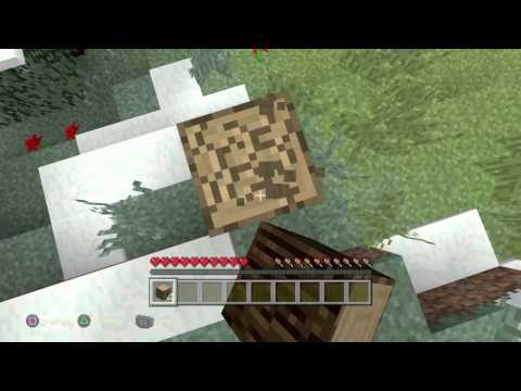 Minecraft Playstation4 Edition
