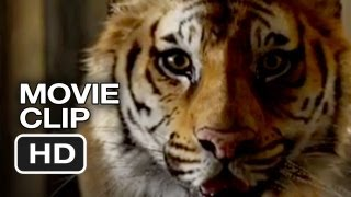 Life of Pi Movie CLIP #3 - Meet the Tiger (2012) - Ang Lee Movie HD