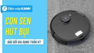 5 lý do bạn nên sở hữu robot hút bụi: lau nhà, quét nhà và hơn thế nữa • Điện máy XANH