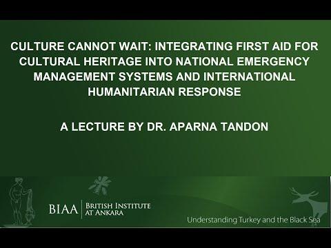 Aparna Tandon: Culture Cannot Wait