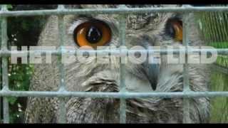 B3/Henk -  Het Boehoe Lied  (Oehoe song part 2)