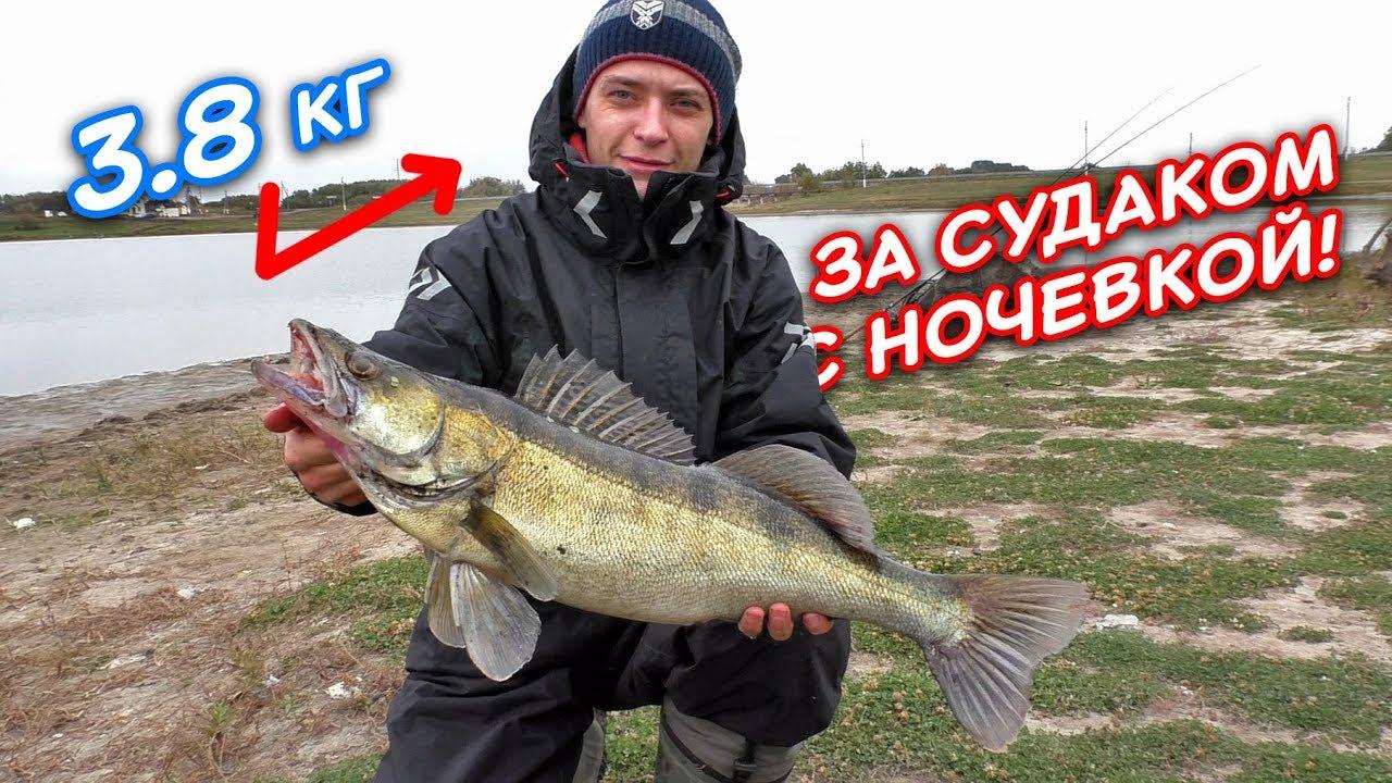 Ловля СУДАКА на спиннинг | Рыбалка с ночевкой