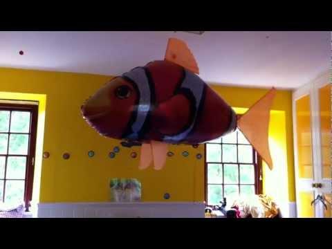 Air Swimmer Clown Fish - RC Helium Balloon