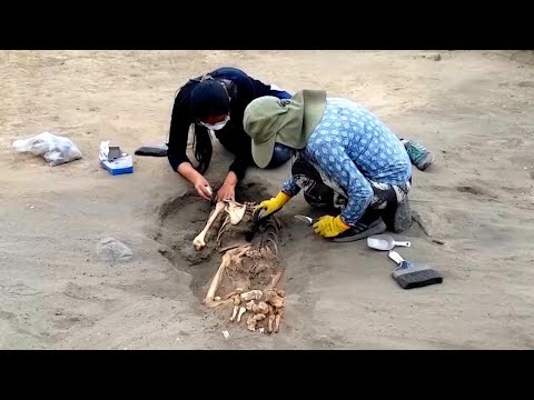 Largest Site of Child Sacrifices in the World Found in Peru