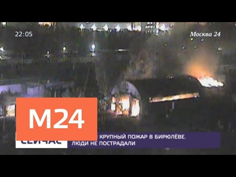 Пожар в Бирюлеве потушили - Москва 24