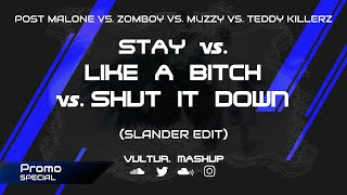 [PROMO] Stay vs. Like a Bitch vs. Shut It Down (Slander Edit) [Who1lyes Mashup]