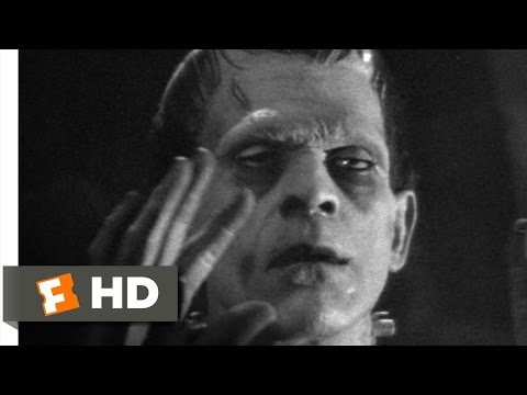 Frankenstein (5/8) Movie CLIP - The Monster Subdued (1931) H