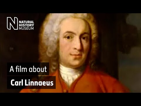 A film about Carl Linnaeus | Natural History Museum