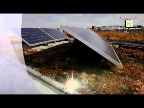 Green Roofs & Solar: Double Your Benefits! by Jörg Breuning & Ryan Miller